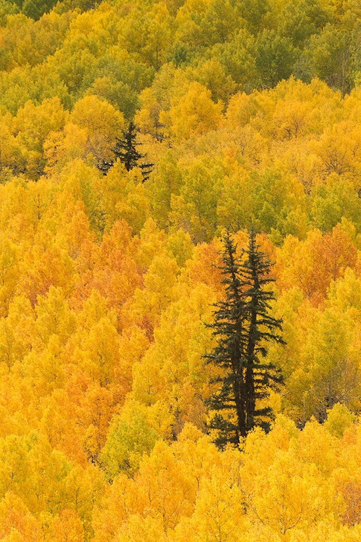 Aspen, Colorado, USA