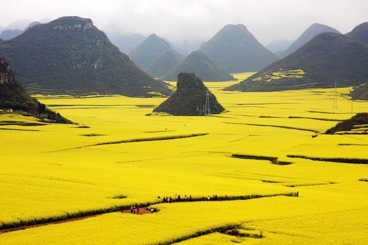 Luoping, Yunnan, Kina