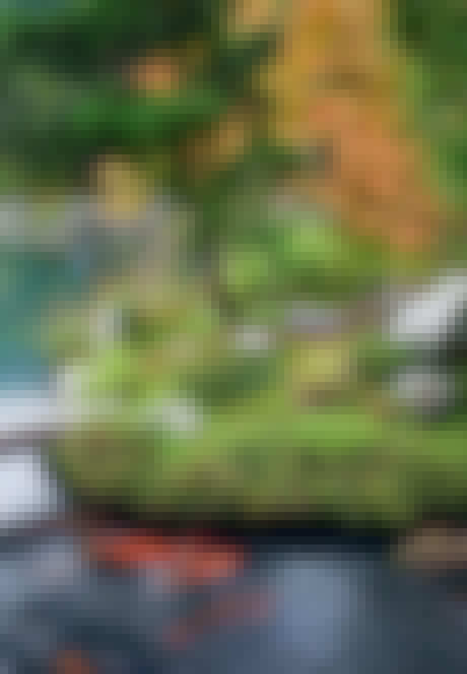 Minimalisme og zen i haven