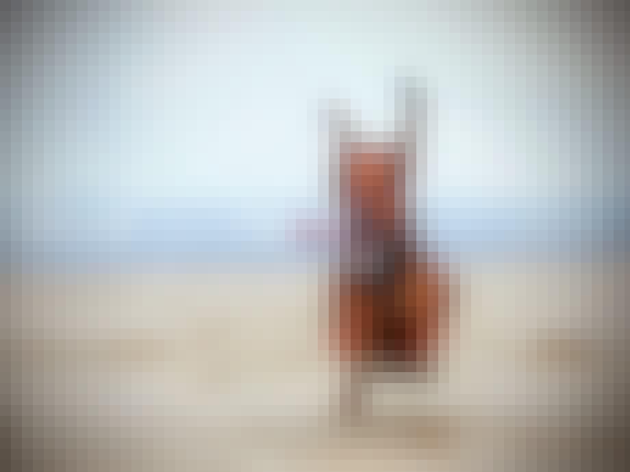 ... ham her ikke må spurte rundt på stranden