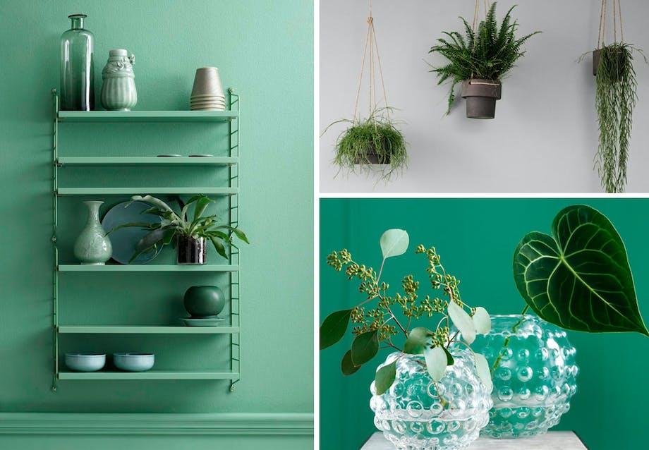 Mode i planter