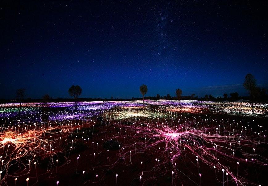 Kunstneren Bruce Munros lysinstallationer i den australske bush