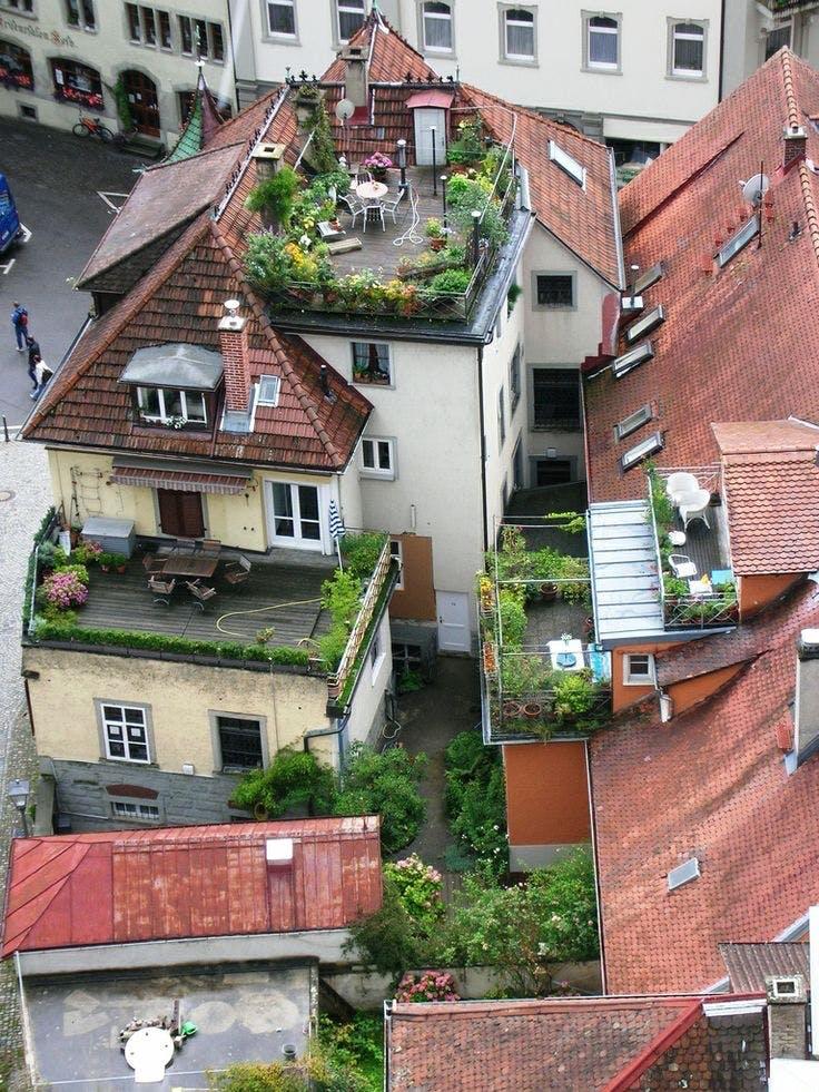 Tagterrasse med planter og blomster