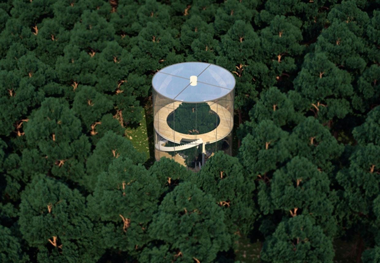 Aibek Almassow runde glashus med et træ i midten og inde i en skov.
