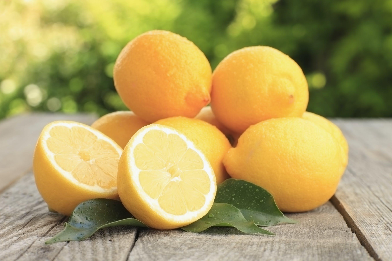 Lær mere om citroner