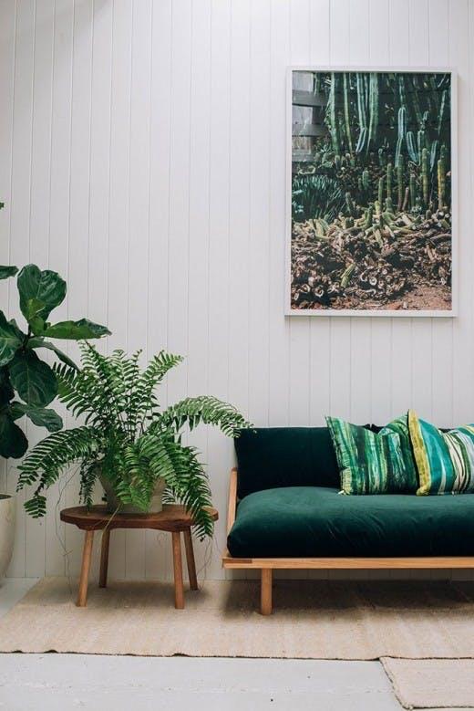 Grønne planter og tekstiler