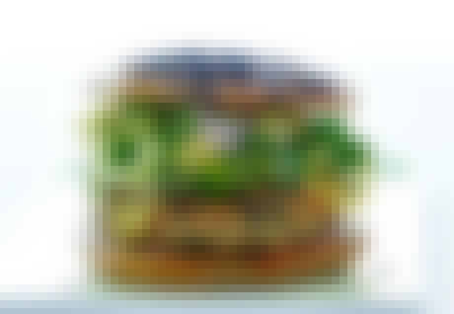 Kyllingeburger med coleslaw og agurkesalat