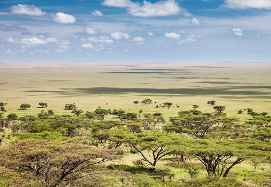 3. Østafrika