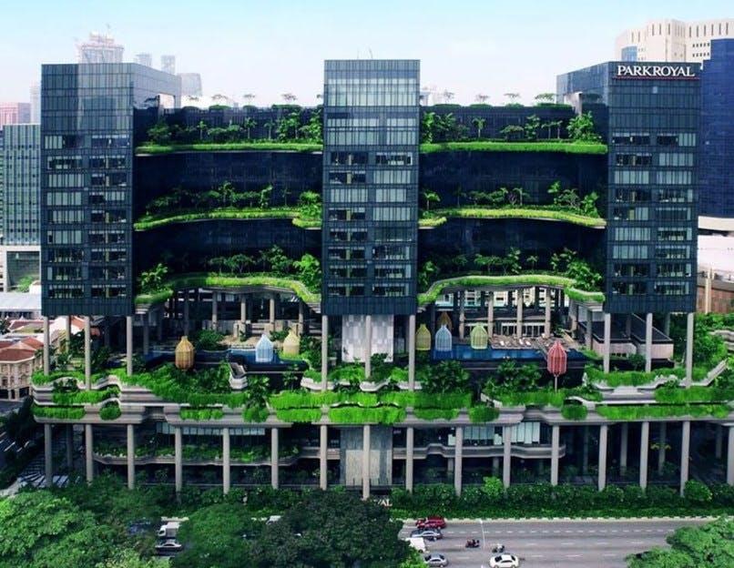 Grøn vinder i Singapore