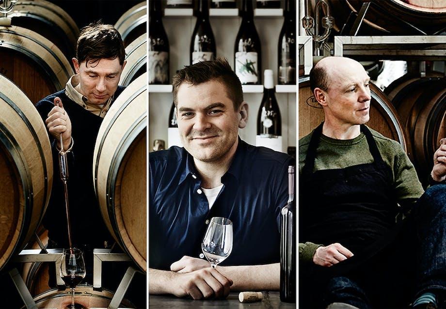 Hvordan opstod ideen til Frederiksdal kirsebærvin?