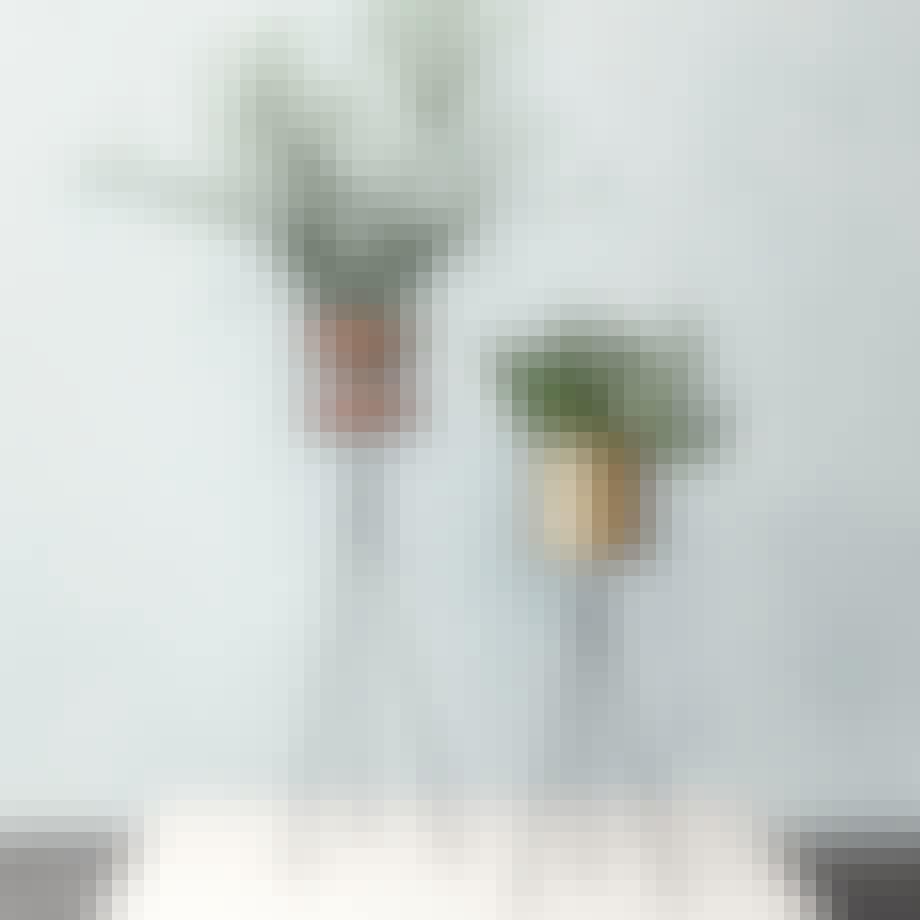 Et stativ til planterne