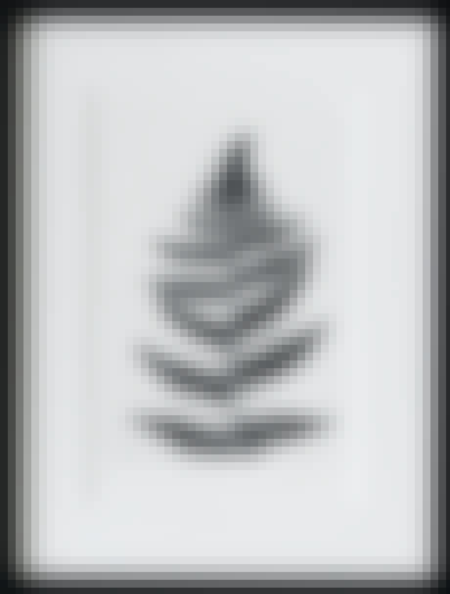 Botanik-tryk