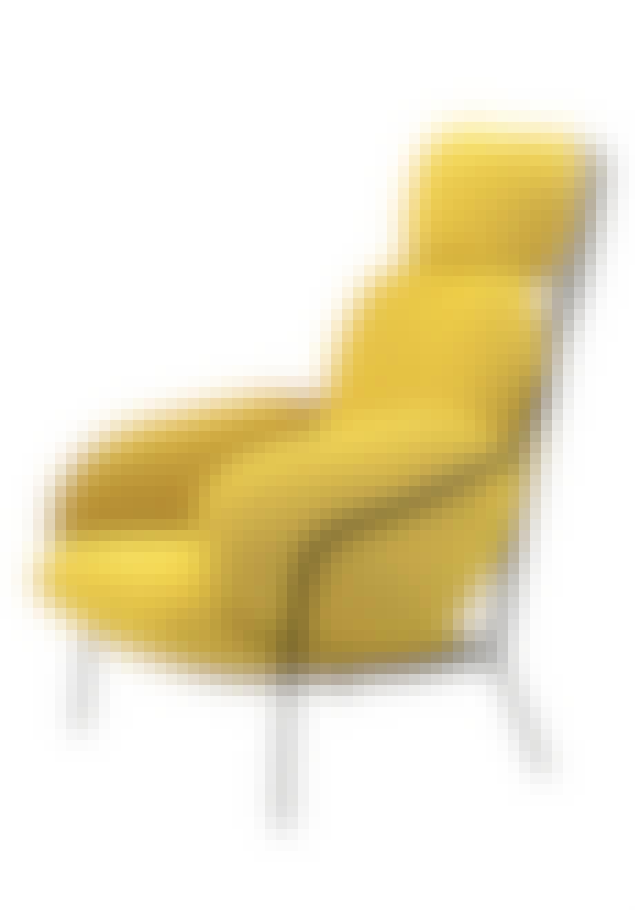 Paffuta