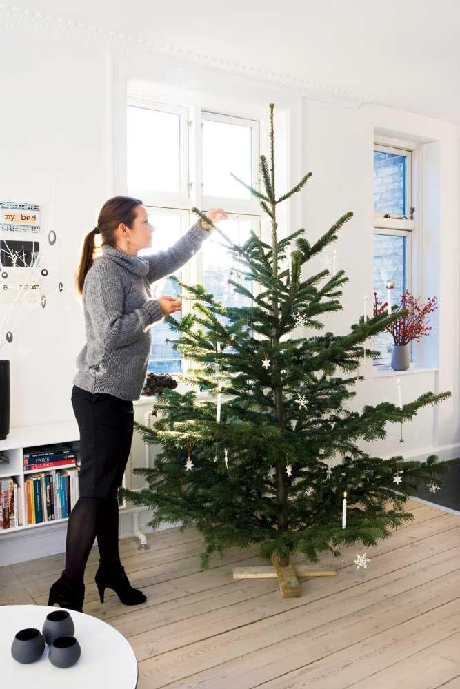 Juletræet står i lejligheden