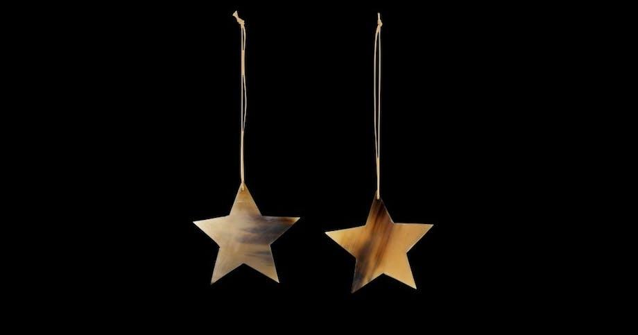 Stjerner i horn