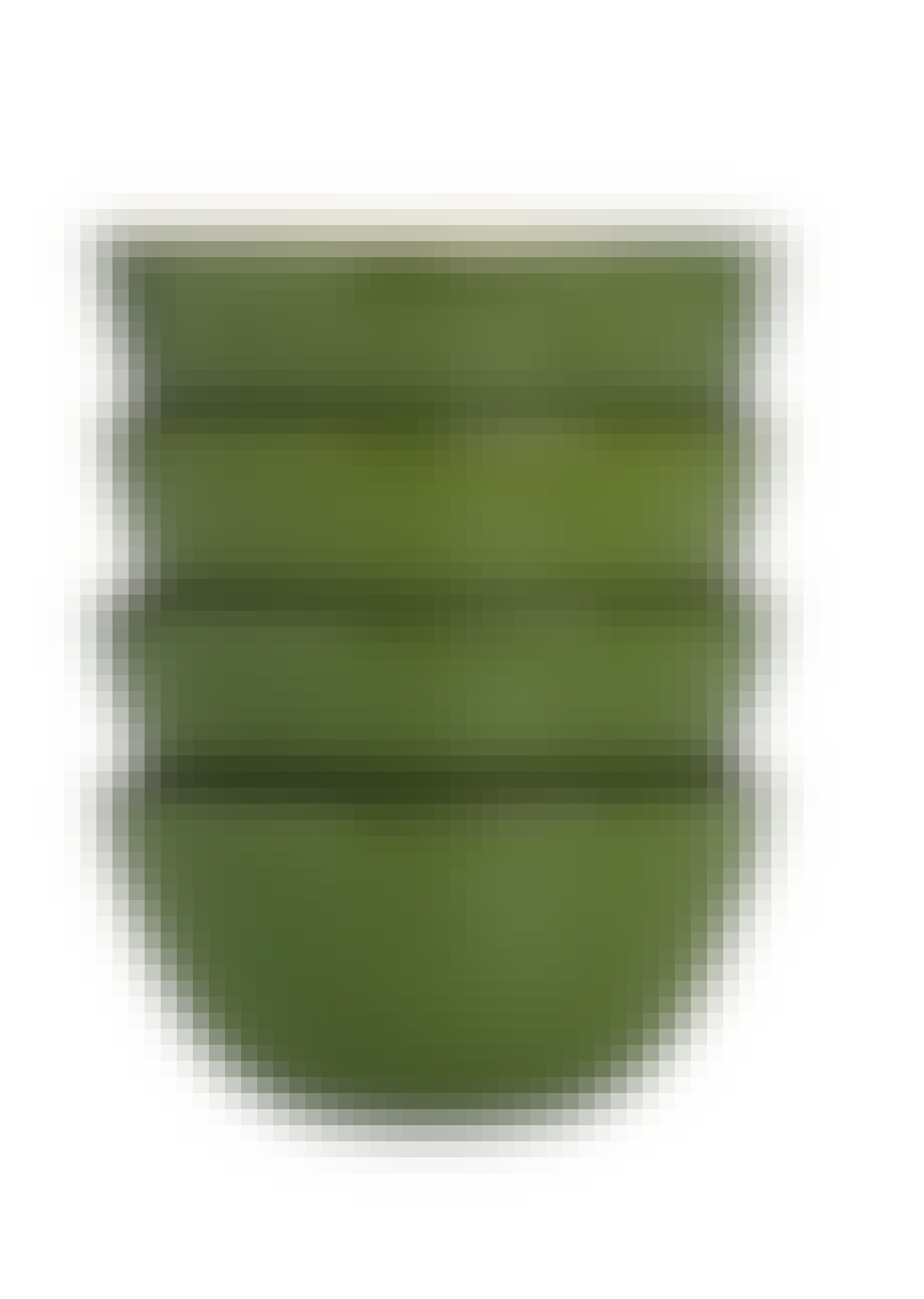 Grøn skål