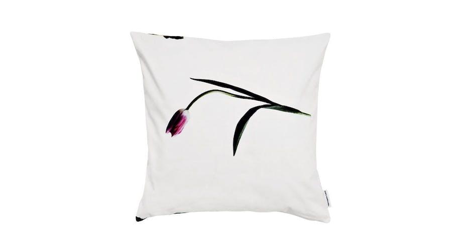 Tulipan på hvid pude