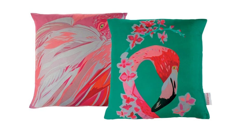 De vilde flamingo-puder