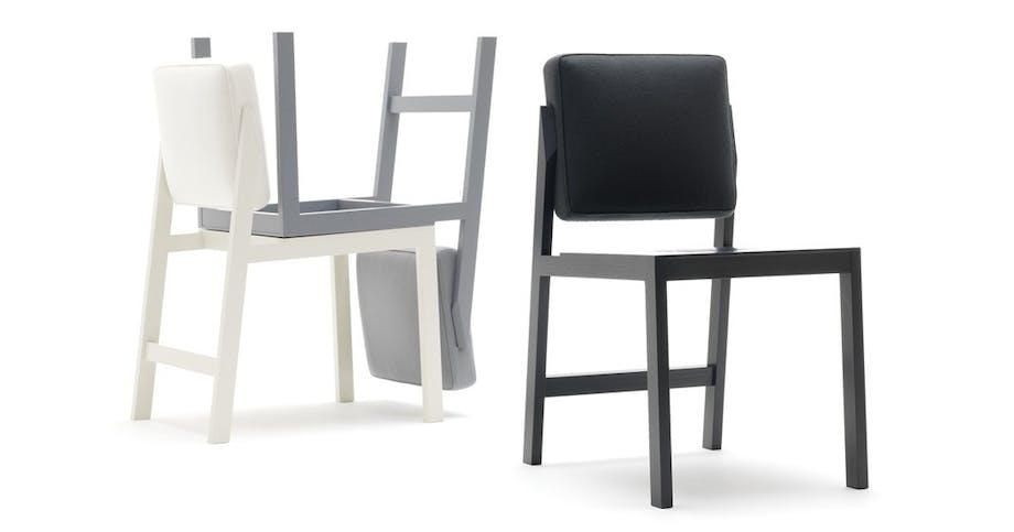 Stol, Chameleon