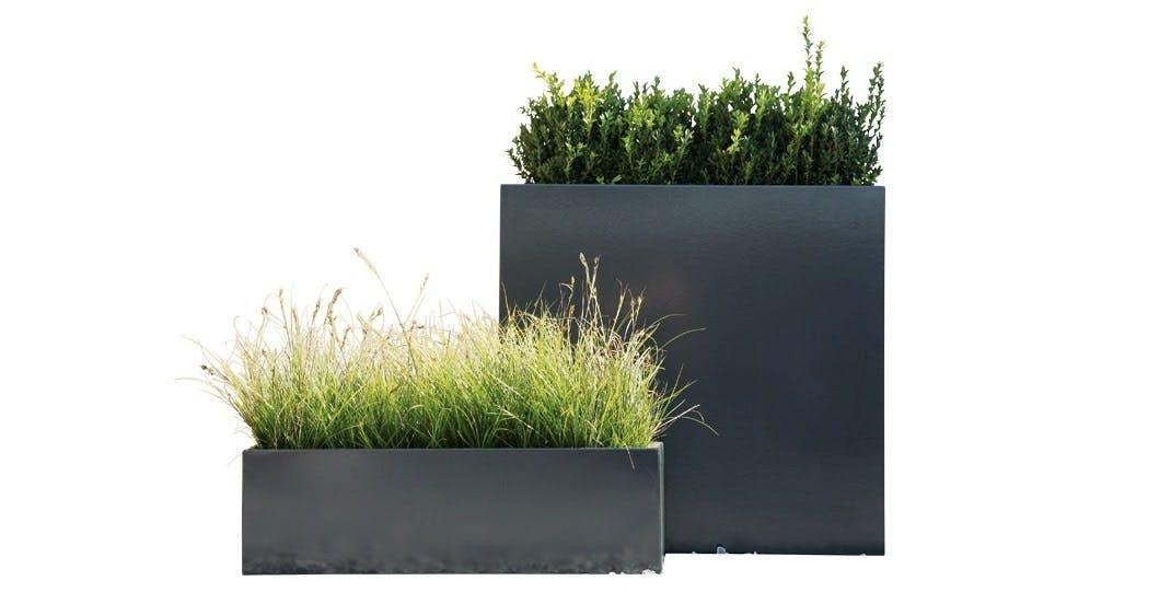 Krukker til det grønne liv på terrassen, Sotomon
