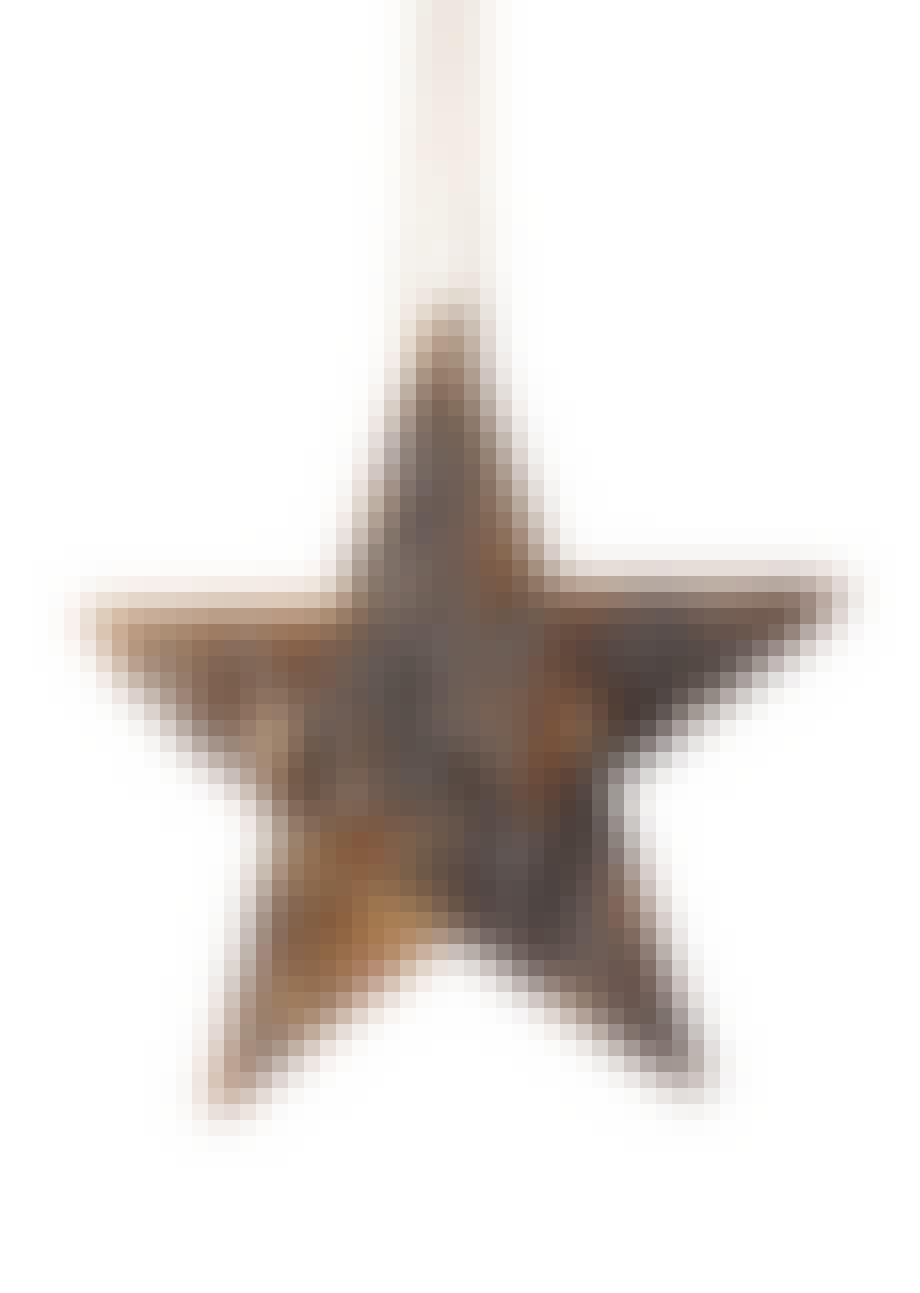 Rustik stjerne