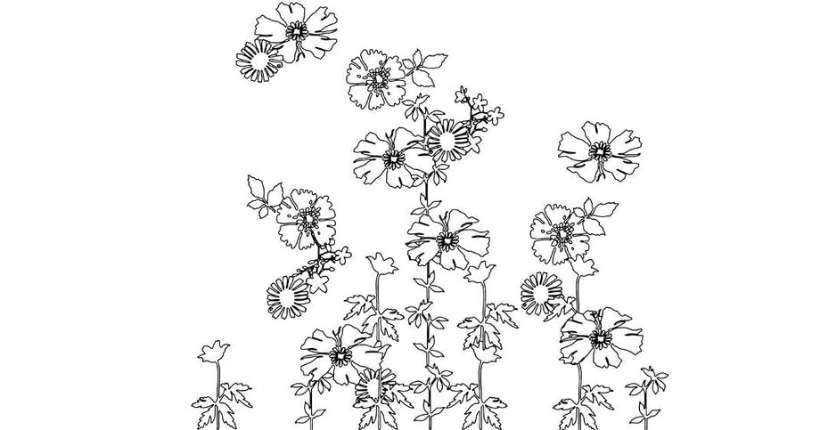 Blomsterskabeloner