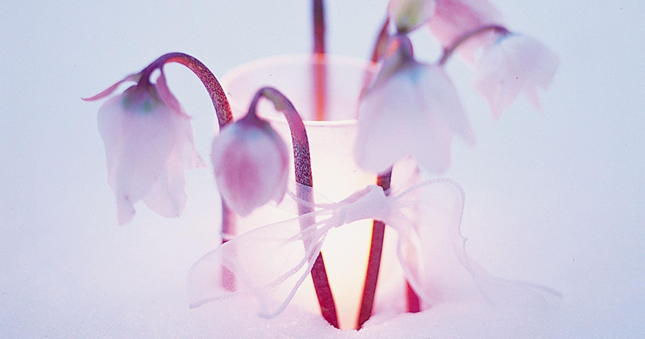 Glas med blomster