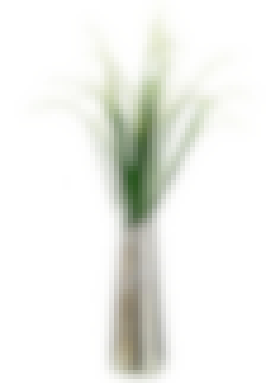 Vase i forsølvet messing