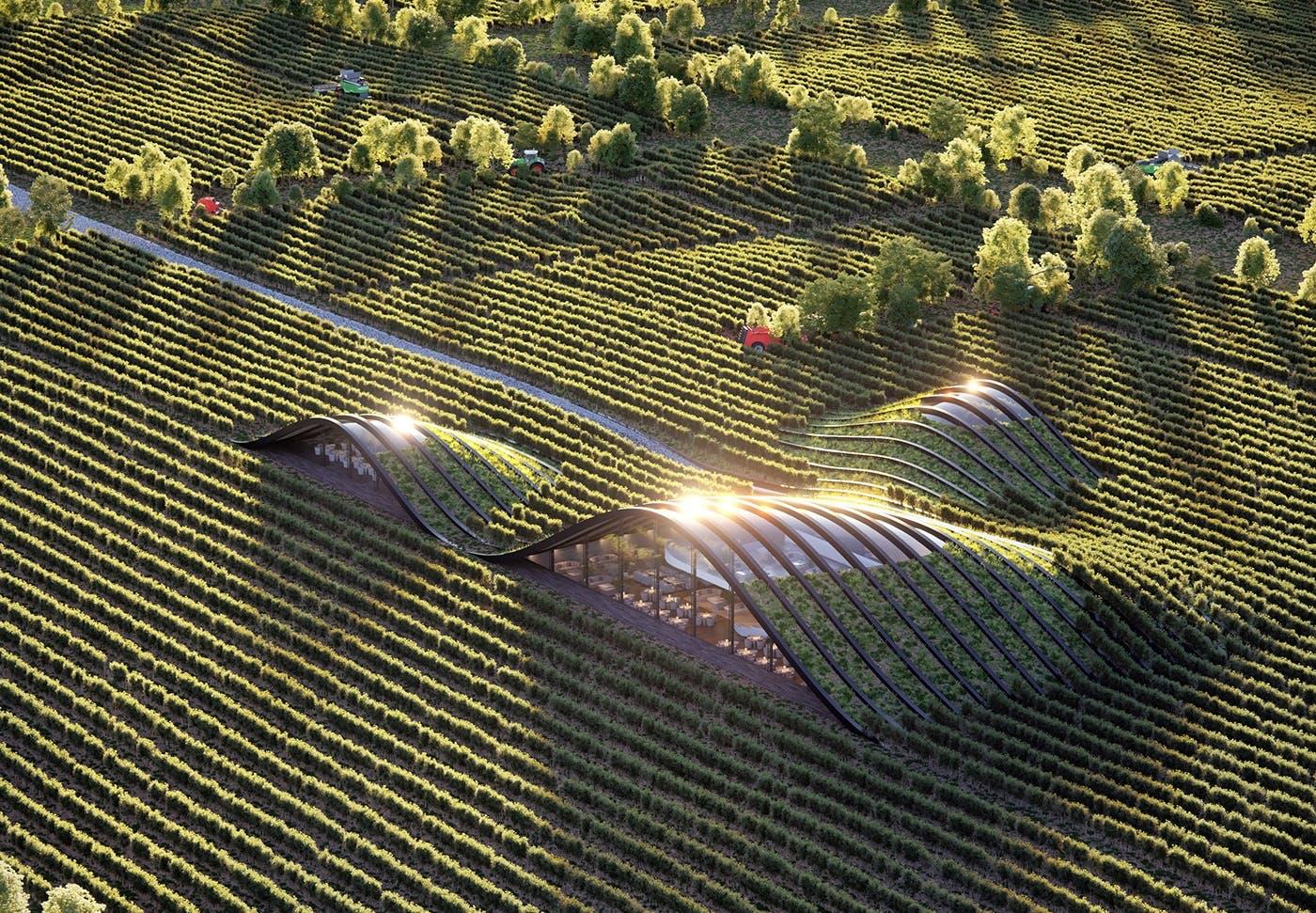 arkitektur vingård vinmark
