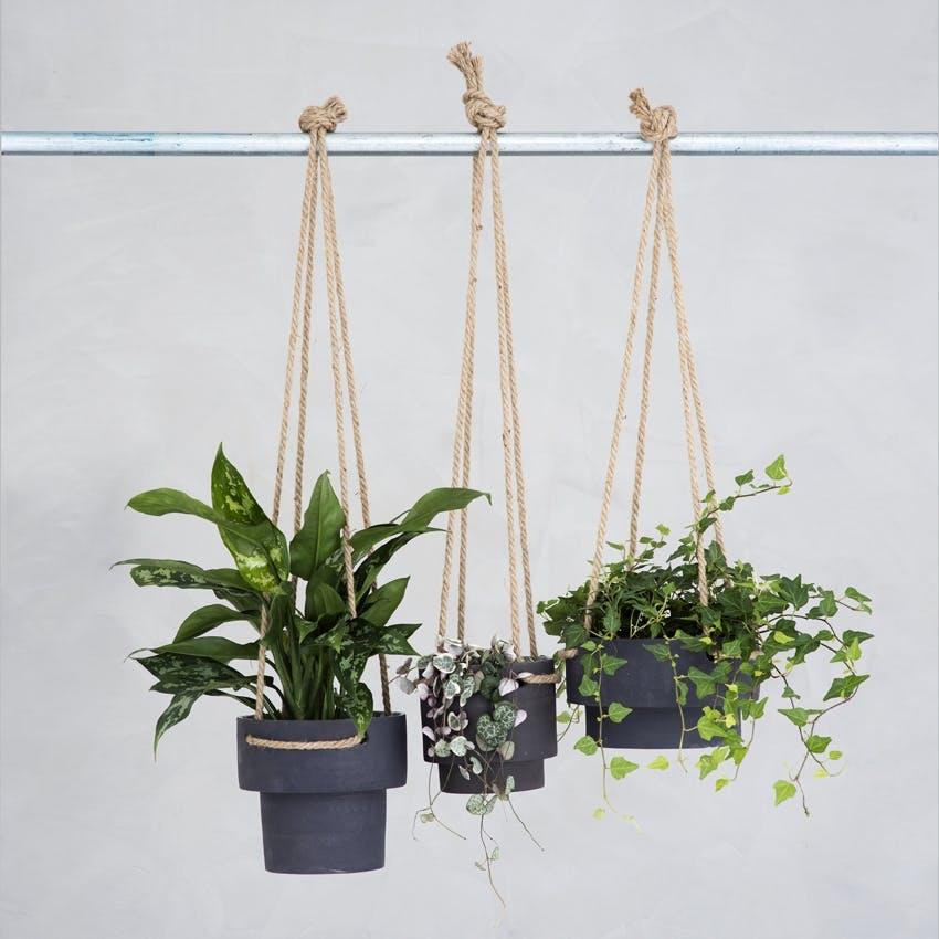 Greenify planter