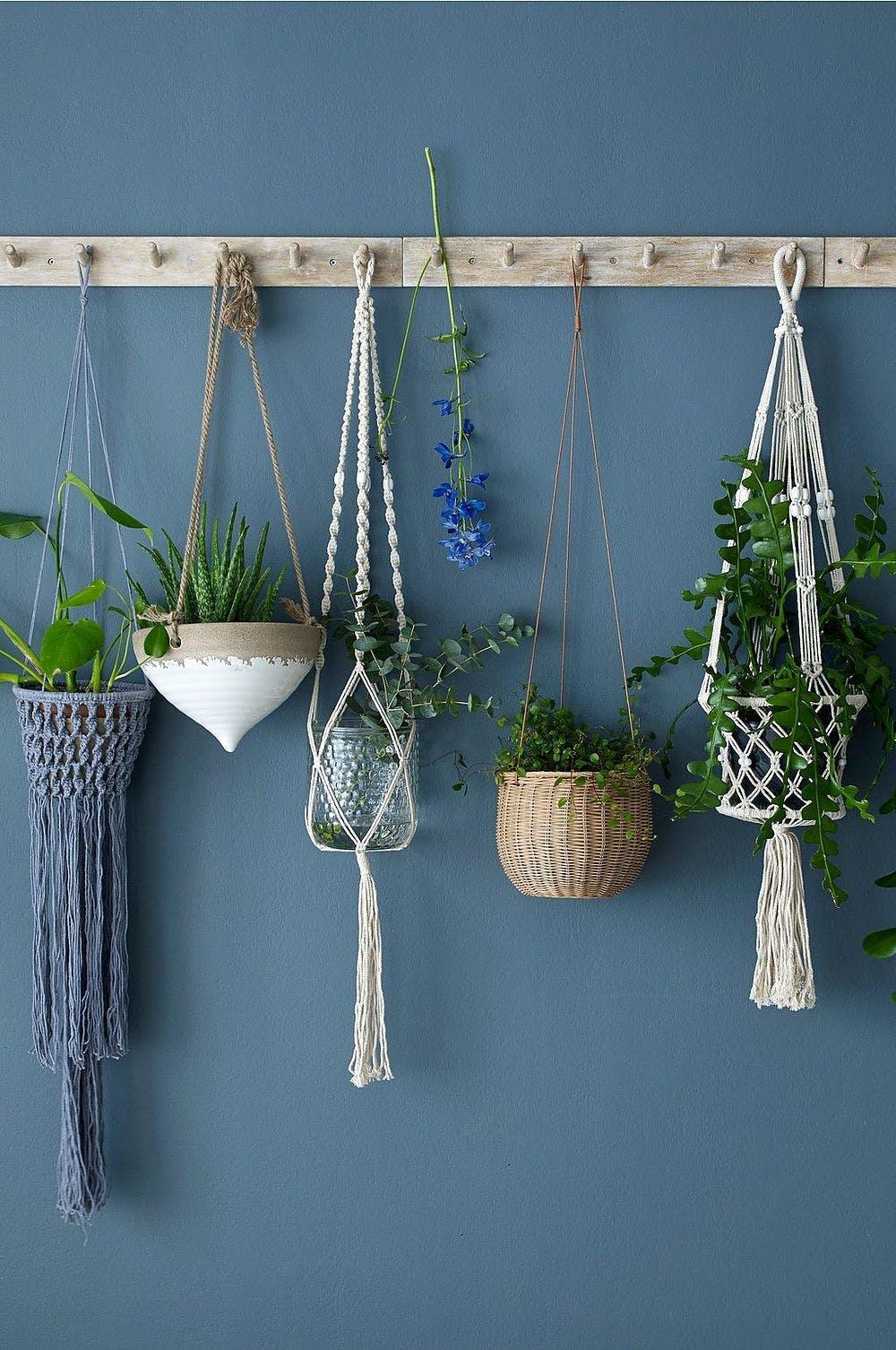 Sådan bruger du hængeplanter i indretningen