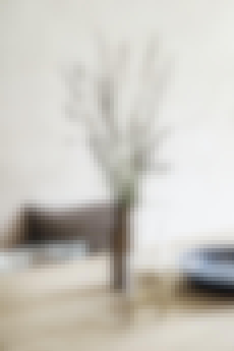 Vase Blomster Spisebord
