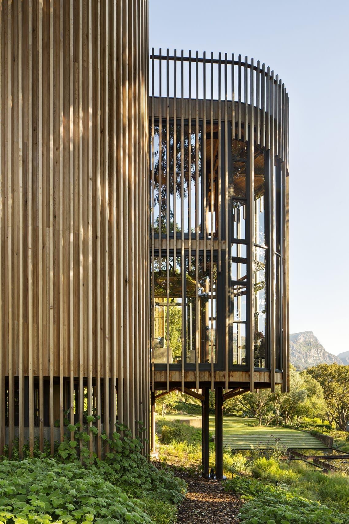 Cylinder arkitektur skov