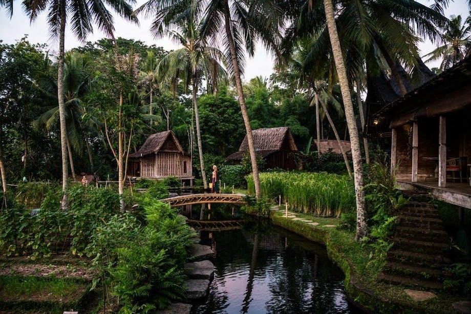 Natur pool bambushotel bali