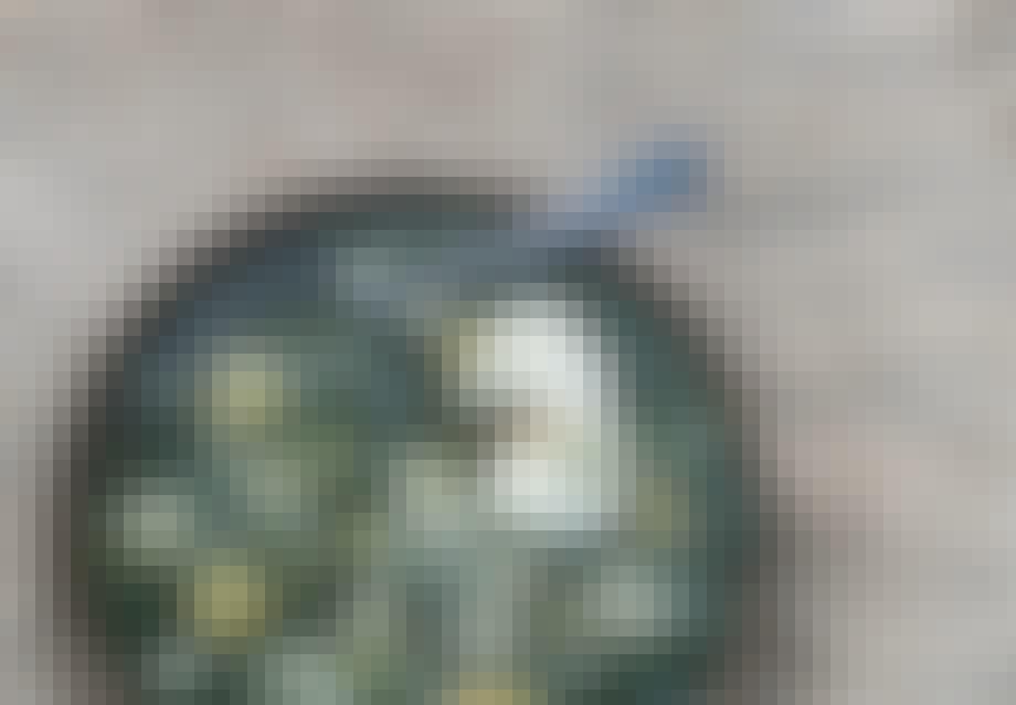 Krydderurtesuppe