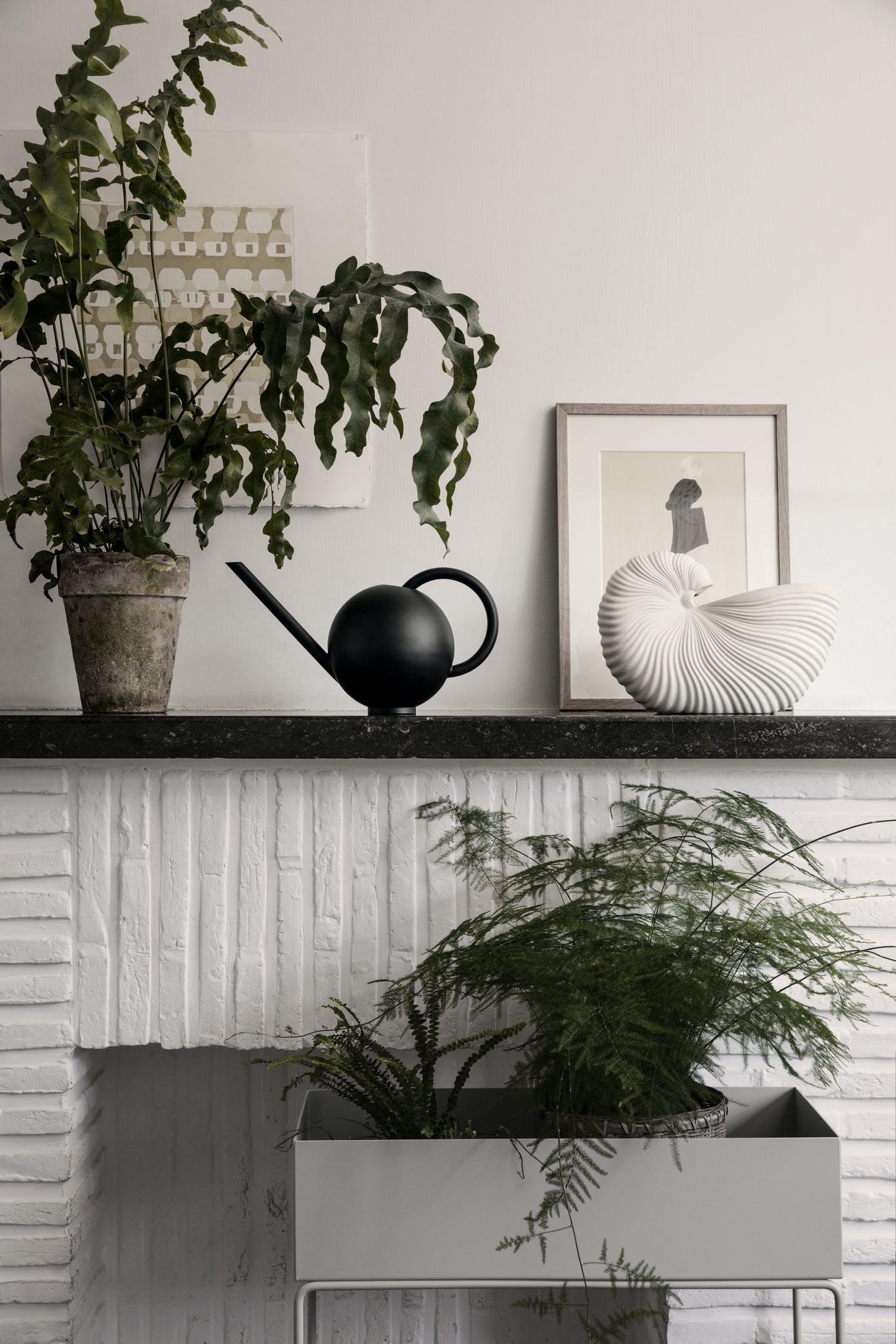 3 skønne nyheder til dine planter fra Ferm Living