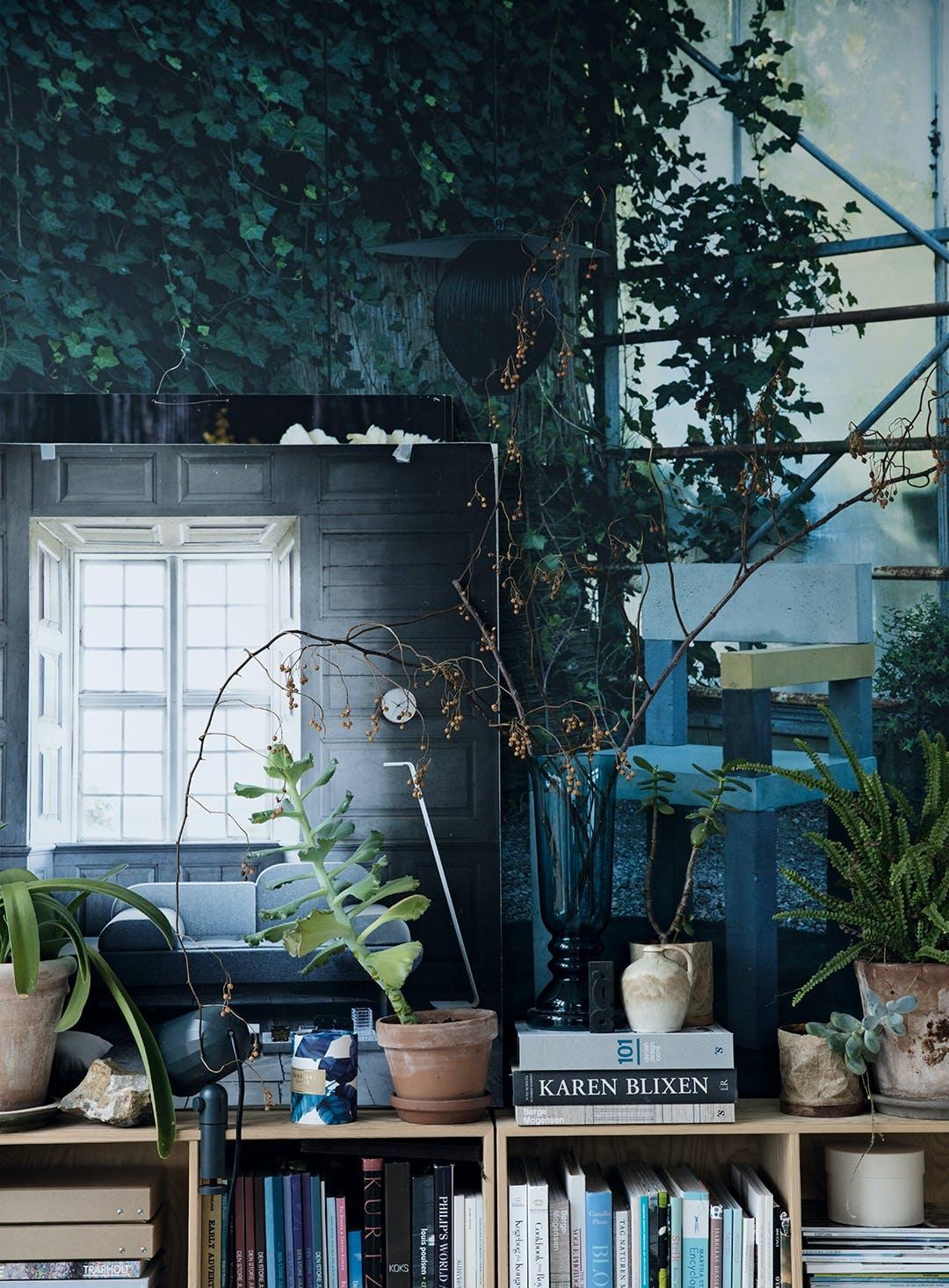 planter bøger stue