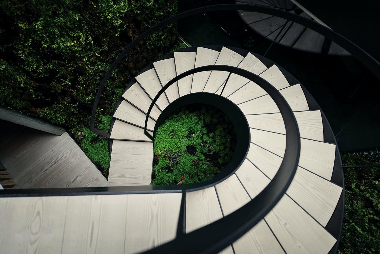 Skulpturell trapp med Douglasgran