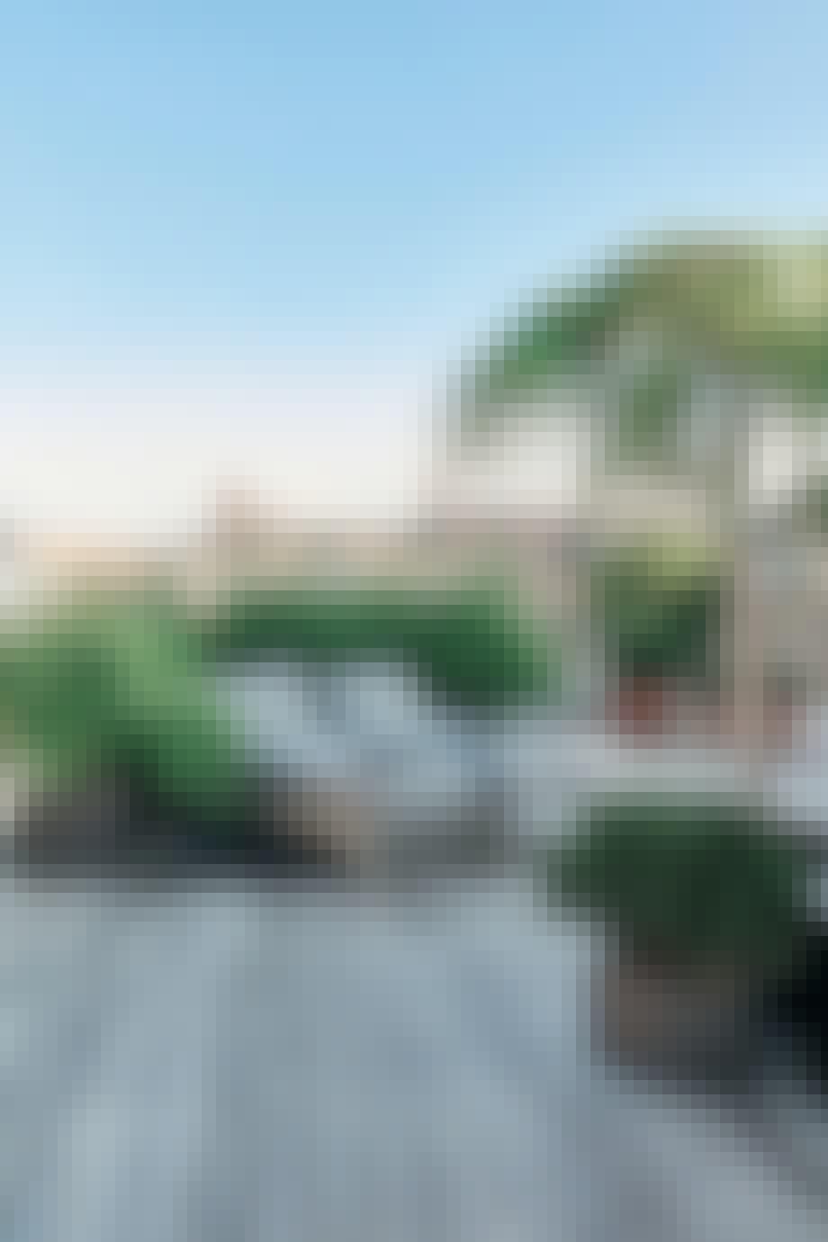 Grønn hekk som skjerming