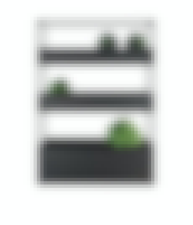 Plantehylle som skillevegg