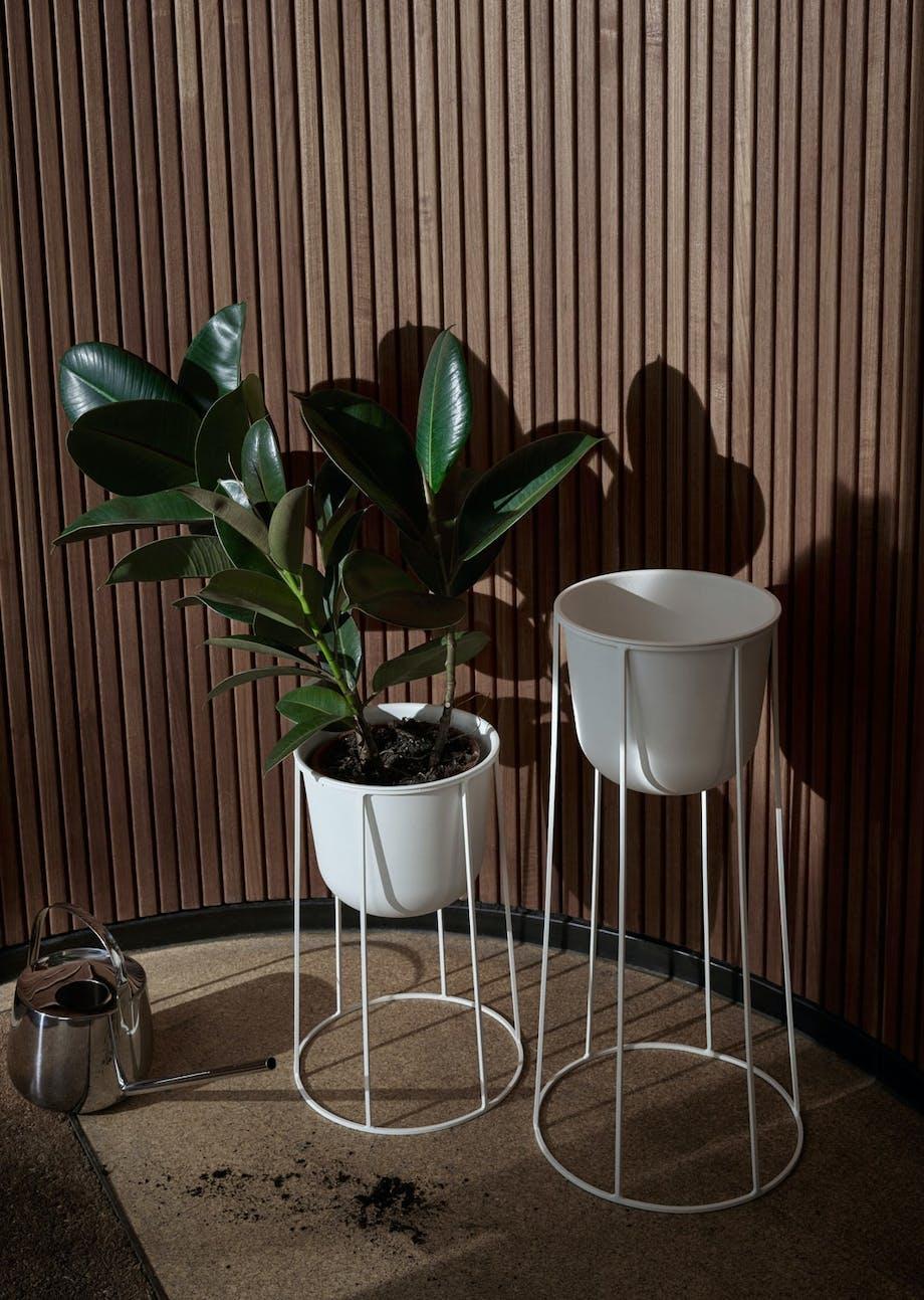 5. Planter på pidestall