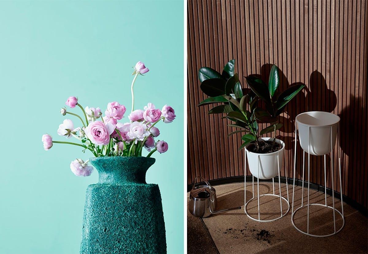 Fra mega 13 trendy interiørtips til blomster og grønne planter | Bo-bedre.no XD-47