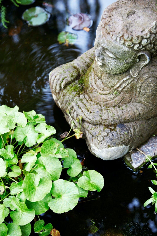 5. Vann gir ro og harmoni