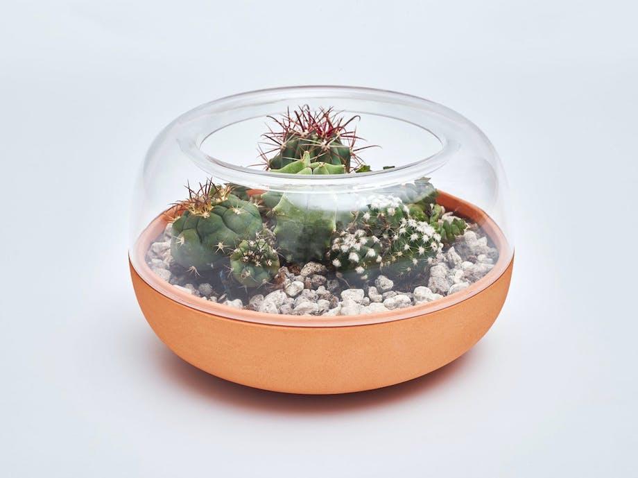 Har du ikke egen hage? Fortvil ikke! Lag en miniatyrhage i vinduskarmen med Biosphere av klart glass og terakotta. 600kr, Nordic Tales.