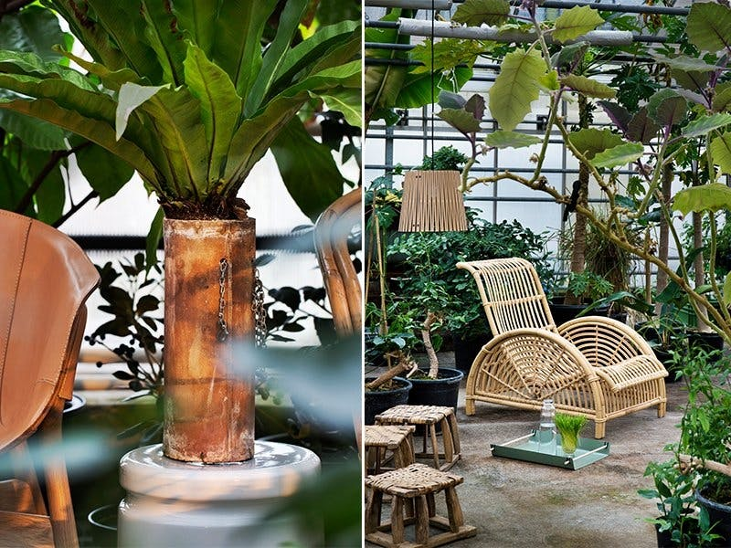 Jungelinspirert med bambus og tropisk aroma