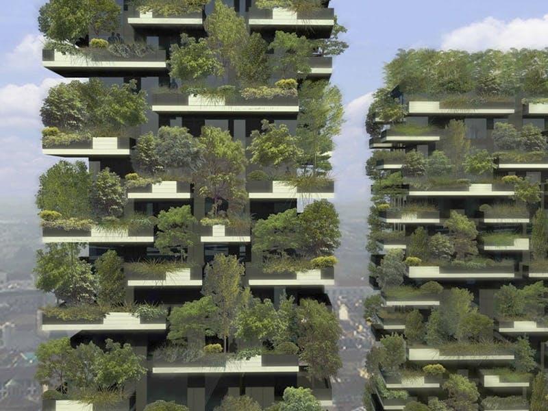 Urban skog