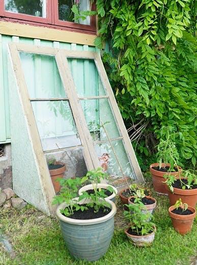 Lag et enkelt drivhus