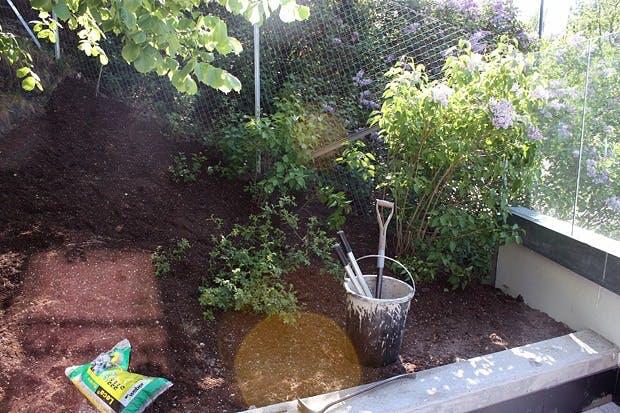 Plantetips til skråninger