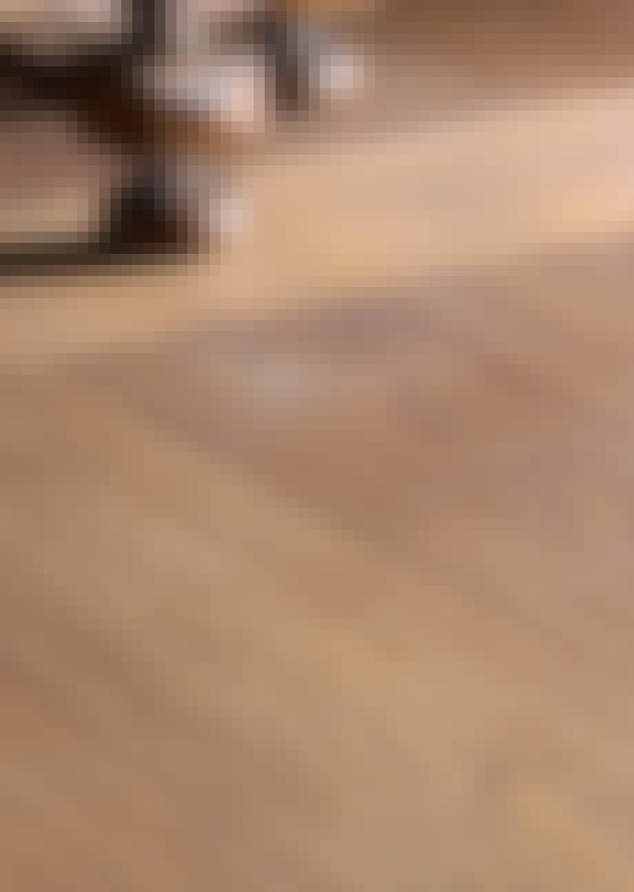 Det rustikke gulvet