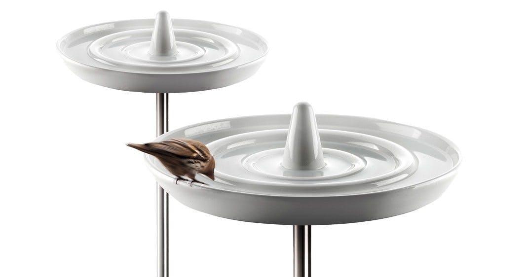Fuglebad til småvennene